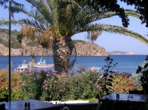 Patmos, Optasia Apartments | Patmos Hotels | Patmos Island | Patmos Apartments | Patmos | Greece
